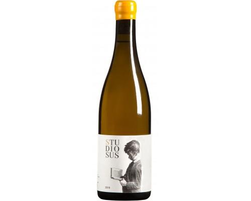 Pinot blanc Studiosus